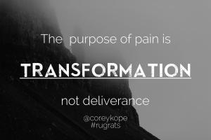 Purpose of pain